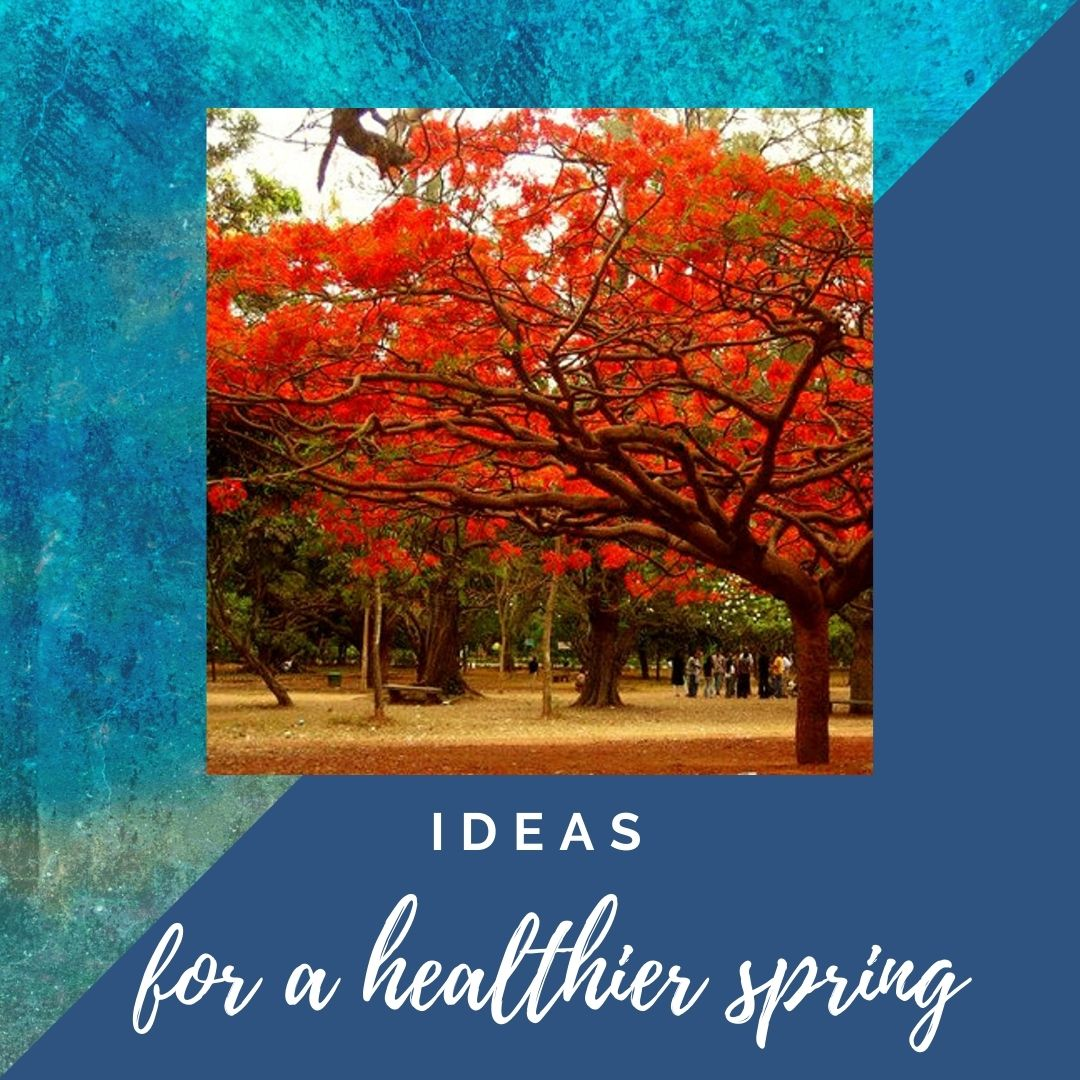 Ideas for a healthier spring