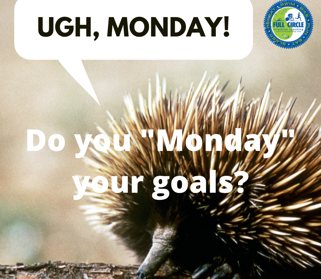 "Do you ""Monday"" Your Goals?"